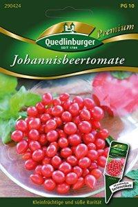 tomate de Johannis