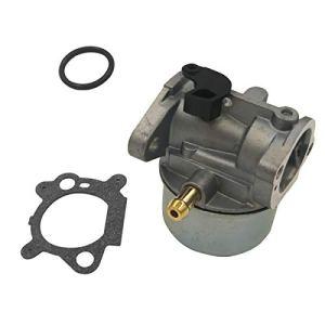 Cancanle Carburateur avec joint pour Briggs & Stratton 497586 498170 799868 498254 497314