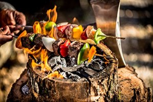 ECO Grill barbecue