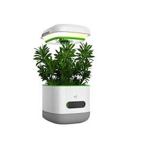 KSTYLE Les Lampes de Culture Poussent Un Ensemble de Jardin intérieur à LED, des Lampes de Culture pour Herbes et potagers, adaptées aux Amateurs de Plantes