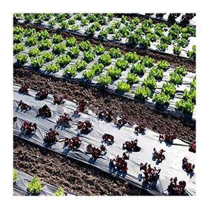ling 0.02mm 5 Trous Films Noirs Végétale Plantes De Jardin Cultivez des Films, Protection De Protection (Size : 10 Meters)