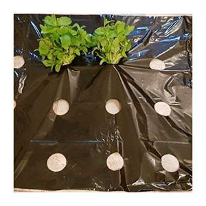 ling 5~50m 0,02mm 5 Trous Film De Jardin Noir, Plantes De Légumes Cultivez Le Film Protection du Film Couvre-Glace Perforée PE Pulch Film (Size : 20 Meters)