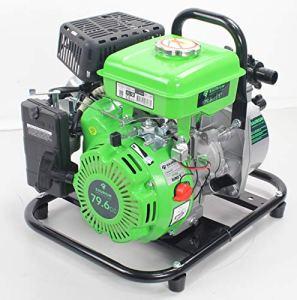 Saurium WPS25-A Motopompe de jardin Vert