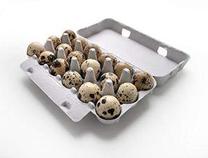 Cnudde Lot de 70 boîtes pour 18 œufs de caille