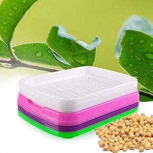 FairOnly Bac de germination pour pépinière, sans sol, grande capacité, pour semis, articles créatifs