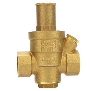 Fockety Adopte la vanne de régulation de Pression DN15 à Structure de Piston, vanne de régulation de Pression, Parc d'usine 1 pièces pour Jardin à la Maison
