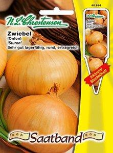 Gs de semences « Sturon » GS sains et très bon entreposage (avec étiquette d'emboîte) » Onion 'Allium cepa.