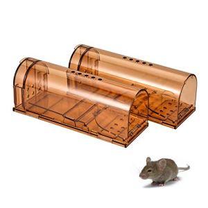 LucaSng Piège à Souris Humain,Respectueuse des Animaux, Capture Les Souris Vivantes, Piège à Rats en Plastique, pour Intérieur Cuisine Maison Jardin (Lot de 2)
