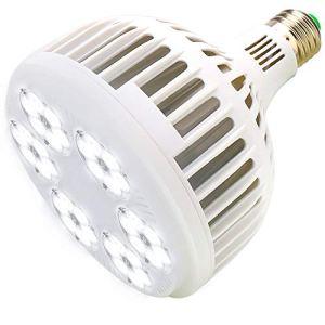 MILYN LED Ampoule de Plante 150W Blanc Spectre Complet Lampe de Croissance des Plantes, E27 élèVent des Lumières pour Les Plantes D'Intérieur, Jardin, Aquarium, Légumes, Serre, Culture Hydroponique