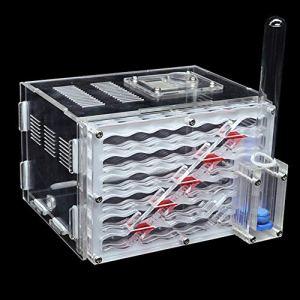 Montloxs Bricolage Antgranery Humidité Zone D'alimentation Acrylique Fourmi Ferme Fourmis Maison Cadeau D'anniversaire