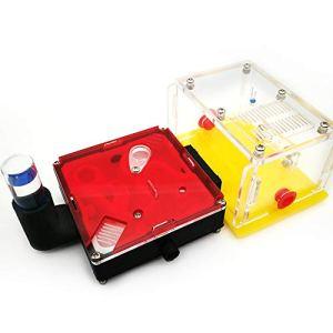 Montloxs X6-C1 bricolage zone d'alimentation en humidité fourmi acrylique fourmis de ferme maison cadeau d'anniversaire