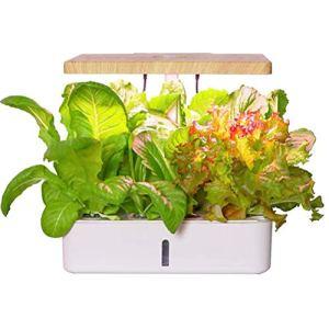 N A Système de Culture hydroponique, kit de démarrage de Jardin d'herbes intérieur avec lumière de Croissance à LED, jardinière de Jardin Intelligente pour Cuisine à Domicile, kit de Germination