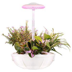 N A Systèmes de Culture hydroponique, Kit de Jardinage d'herbes intérieur réglable en Hauteur avec Lampe LED Hydroponique Auto-arrosage, Kit de Germination Automatique pour Herbes et légumes