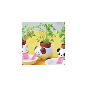 Pot Trèfle à 4 feuilles Peropon Chien
