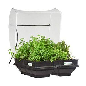 Vegepod Kit de lit de jardin surélevé 1 m x 1 m avec housse de protection, arrosage automatique, assemblage facile