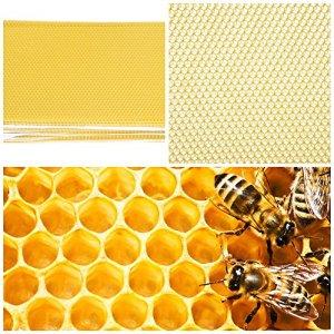 Zerodis 30Pcs Nid D'Abeilles Ruche Cire d'abeille Fondation Feuille Abeille Ruche Cadre Outil pour Miel Extracteur Équipement D'Apiculture