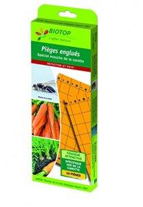 Biotop – piège englué chromatique oranges