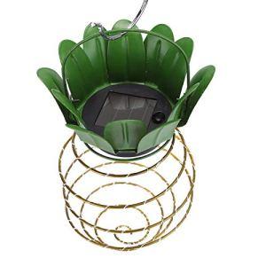 Lampe Suspendue de chaîne LED réutilisable d'ABS accrochant Le Fruit de Lanterne en Forme pour la Maison