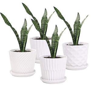 Lot de 4 Pots de Fleurs cylindriques en céramique avec Soucoupe connectée pour Plantes succulentes et Petits Serpents Blanc 14 cm