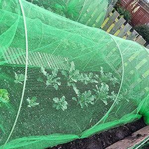 Filet Anti-Oiseaux 2m x 5m en Maille Filet de Protection Filet de Volière Filet Jardin, Filet de bassin pour plante Filet de protection pour Pest Control