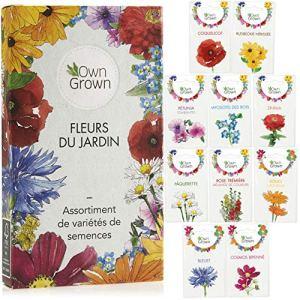 Kit de graines de fleurs: 10 variétés de semences de fleurs et de fleurs comestibles – Kits prêt-à-pousser semences de plante pour le jardin et le balcon. Graine fleurs extérieur par OwnGrown