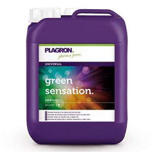Plagron Green Sensation Activateur de fleurs 5 l