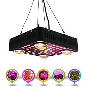 Relaxbx Lampe de Croissance pour Plantes1000W LED, Ligne accrochante de Double Puce de Spectre Complet allumant des appareils d'éclairage pour l'ensemencement de Serre hydroponique d'intérieur