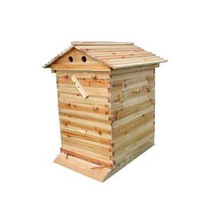 Ruche en bois professionnel – Jusqu'à 7 cadres de ruche – Peigne naturel – Maison d'abeilles – Outils d'apiculteurs