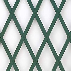 Trepls Treillage Extensible en PVC 1,00×2 m Vert