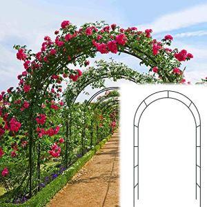 WYCD Arche de rosiers, Arceau de Jardin, tonnelle de Jardin, métal, Support pour Plantes Grimpantes Stable, décoration cérémonie Mariage fête