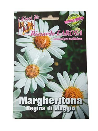 2 sachets de margueritona – reine de mai.