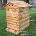CRZJ Boîtes de Ruche de Maison en Bois d'apiculture – Boîtes de Ruche d'abeille – pour Les apiculteurs de qualité Alimentaire BPA, Cadre de Ruche à Flux Automatique Max 7 pièces
