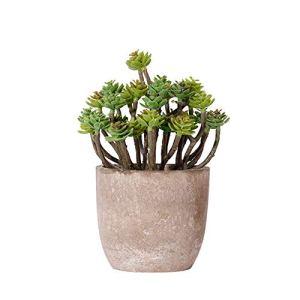 Openg Plante Artificielle Interieur Plante Grasse Décoration de Mariage Moderne Artificielle Plante en Pot Décorations Grave Plante en Pot Intérieur
