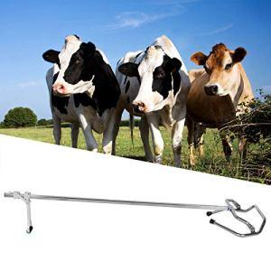 Sage-Femme de Vache résistante à l'usure, équipement de bétail vétérinaire, pour Vache de Mouton d'élevage