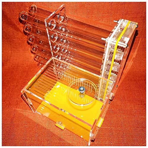WWL Fourmilière Acrylique Élevage De Fourmis Boîte avec Eau La Tour Hydratant Insecte pour Enfants Éducatif Jouets DIY Assemblée (Color : B)