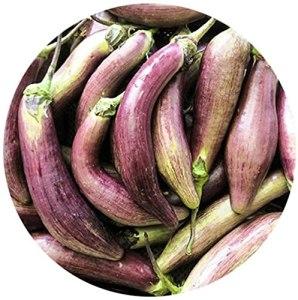 100Pièces Aubergine Graines Légumes Santé Cultures à Faible Entretien Riches En Nutriments Graines Fraîches Adaptées Aux Débutants Facile à Planter Dans Le Jardin