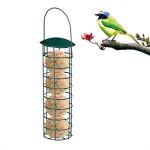 2021 Nouveau Mangeoires Distributeur De Nourriture pour Mangeoires À Oiseaux en Plein Air, pour Boules De Graisse pour Boulettes, pour Petits Oiseaux Mangeoire À Oiseaux, Distributeur De Nourriture p