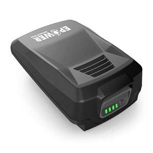 Alpina E-Power B 24 Batterie 20 V Lithium-Ion, Capacité Batterie 4 Ah, Compatible avec tous les outils portatifs et tondeuses Alpina 20 V, Indicateur LED de charge de la batterie