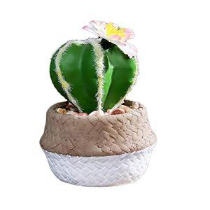Atlnso Plantes succulentes artificielles avec pots Mini forme ronde Pot de fleurs Cactus Plastique Faux Plantes Vertes Décoration pour Jardin, Table, Balcon, Bureau