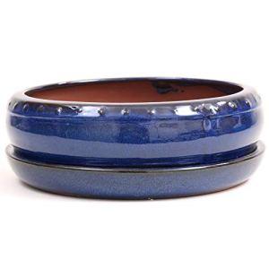 Bonsai 31116 Bol rond avec soucoupe Bleu Ø x 8 cm