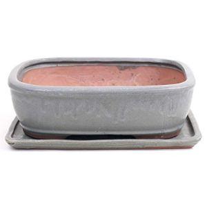 Bonsai 41090 Bol rectangulaire avec soucoupe Gris 32 x 24 x 9,5 cm
