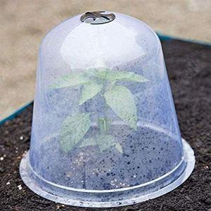 Cloche de Plantation Plastique réutilisable Transparent Respirant Réchauffement Cloche de Plus en Plus Cloches de Jardin Protection des Plantes Contre Le Gel Escargots Oiseaux Pluie 6 pièces