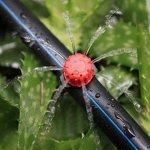 Kalolary 200Pcs 1/4″ Goutteur Irrigation, Goutteurs réglables d'irrigation arrosage Goutte à Goutte pour Plante Jardin Serre Potager Gazon