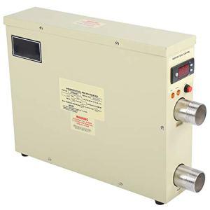 Labuduo Chauffe-Eau à Thermostat, Chauffe-Eau, 5.5KW Haute Performance 220V pour Bain à remous d'hydrothérapie Piscine de Source Chaude