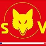 Outils Wolf | SEMOIR Multi-Star | Réservoir à semences | EAM