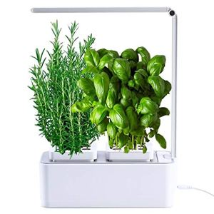 amzWOW Smart Garden – Cultivez vos herbes aromatiques – Potager d'Intérieur 100% Bio – cultiver vos propres plantes à la maison – Lumière LED incluse