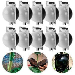 ANSUG 10 pièces Boîte de greffage de Plantes, Propagateur de Coupe de Plantes, Matériau Transparent Visible et réutilisable, pour Greffe d'arbres fruitiers, clonage de Plantes (M, Noir Transparent)