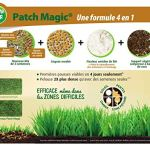 Fertiligene Patch Magic Renovateur Gazon 4 en 1 Epandeur 750g