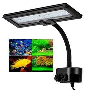 Hygger Lampe LED Aquarium, 21W Lampe à Clip pour Aquarium, Lampe 45 LEDs, Éclairage Blanc Bleu, avec Un Col de Cygne à 360 Degrés, Éclairage LED Clip pour Éclairage Réservoir de 35-50 cm, Plug EU