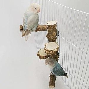 libelyef Perroquet Perche Stands Oiseaux Stand Pole Poteau De Support D'oiseau en Bois Épineux Sauvage Matériau en Bois Épineux 100 Naturel Garder Les Oiseaux Stables Et Heureux